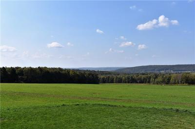 Chautauqua County Residential Lots & Land A-Active: Ravlin Hill Road