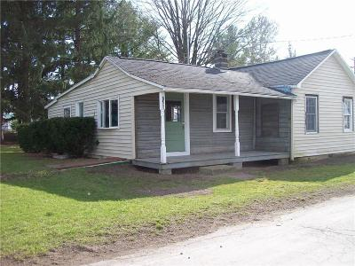 Livonia Single Family Home A-Active: 7388 Water Street