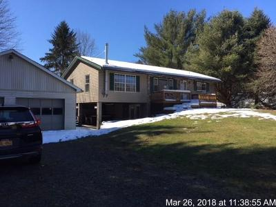 Carroll NY Single Family Home A-Active: $64,000