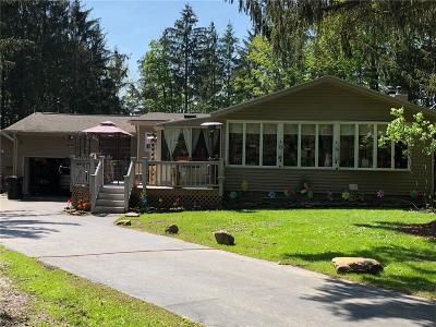Springwater Single Family Home A-Active: 7241 Canadice Road