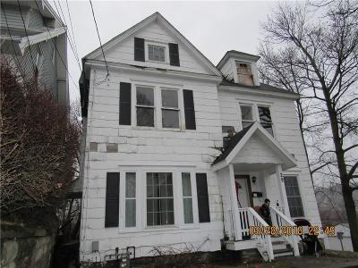 Chautauqua County Multi Family 2-4 A-Active: 29 Center Street