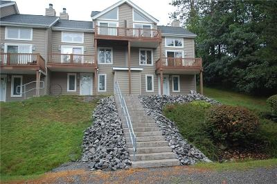 Ellicottville Condo/Townhouse A-Active: 514 Deer Crossing Road #514