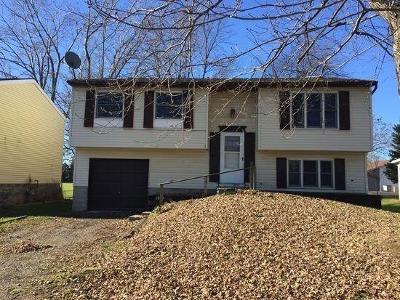 Farmington Single Family Home A-Active: 1260 Pine Hill Lane