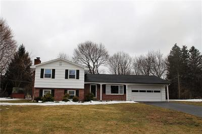 Single Family Home A-Active: 767 Yorkshire Circle