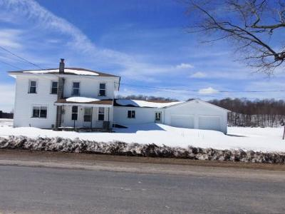 Wayland Single Family Home A-Active: 10395 County Route 92