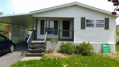 Victor Single Family Home A-Active: 6329 Murphy Drive #210