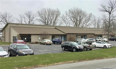 Monroe County Commercial A-Active: 30 Erie Canal Drive