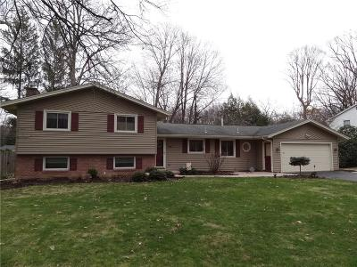 Pittsford Single Family Home A-Active: 16 Kimberly Road