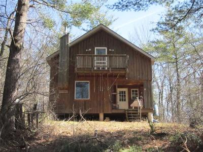 Dansville Single Family Home A-Active: 517 Geiger Road