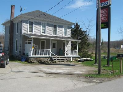 Conesus NY Single Family Home A-Active: $79,000