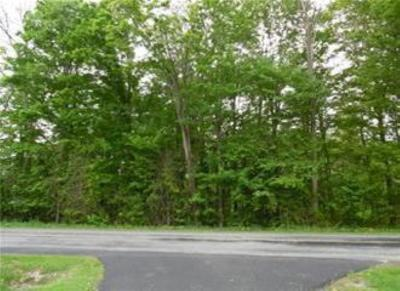 Ellery NY Residential Lots & Land A-Active: $25,000