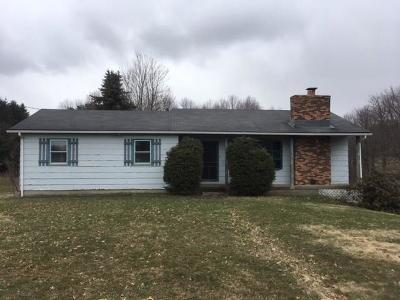Carroll NY Single Family Home A-Active: $49,000