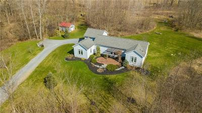 Gorham Single Family Home A-Active: 3970 Clark Rd