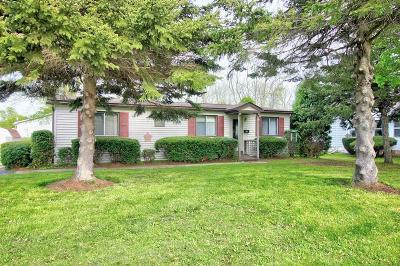 Seneca Falls Single Family Home A-Active: 7 Sackett Street