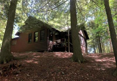 Inlet Single Family Home A-Active: 175 Sixth Lake Rd Road