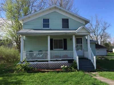 Albion Single Family Home A-Active: 224 East Park Street