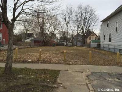 Rochester Residential Lots & Land A-Active: 184 Warner Street
