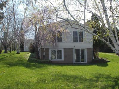 Livonia Single Family Home A-Active: 4601 East Lake Road