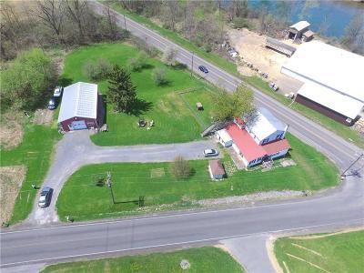Seneca Falls NY Single Family Home C-Continue Show: $119,900