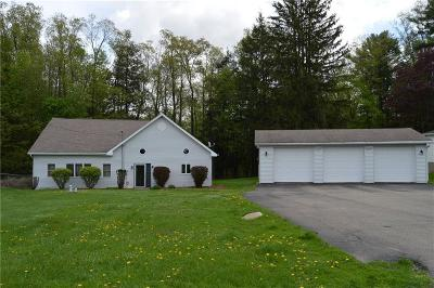 Ellicott NY Single Family Home A-Active: $130,000