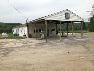 Springwater NY Commercial A-Active: $124,900