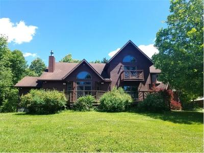 Genesee County Single Family Home A-Active: 9531 Putnam Road Road