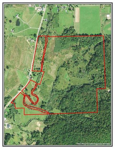 Allegany County, Cattaraugus County Residential Lots & Land A-Active: 1860 Haskell Road