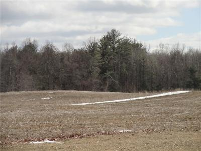 Waterloo NY Residential Lots & Land A-Active: $127,000