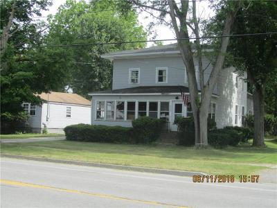 Genesee County Multi Family 2-4 A-Active: 6296 Route 262