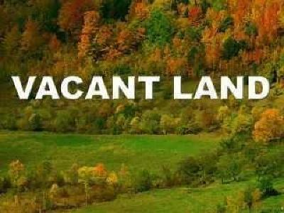 Stockton NY Residential Lots & Land A-Active: $125,000
