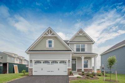Single Family Home A-Active: 703 Hillspring Terrace