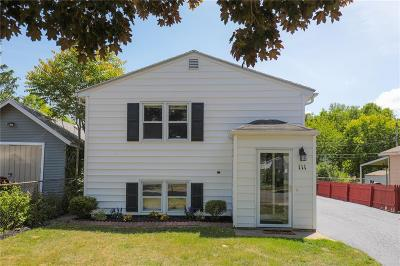 Rochester Single Family Home C-Continue Show: 111 Leroy Street