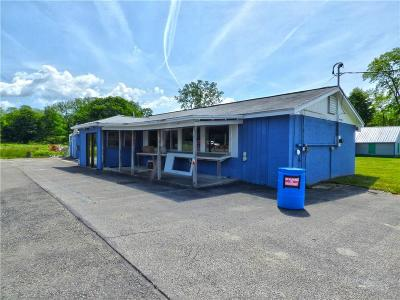 Chautauqua County Commercial A-Active: 4850 Route 430