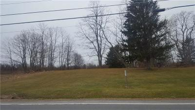 Residential Lots & Land A-Active: 0 Vl Lake Road