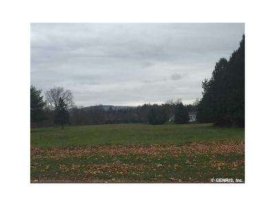 Dansville NY Residential Lots & Land A-Active: $29,900