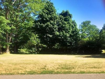 Residential Lots & Land A-Active: Lakeview Avenue South