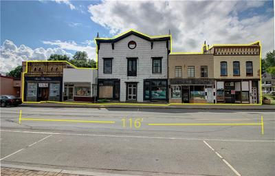 Waterloo NY Commercial A-Active: $345,000