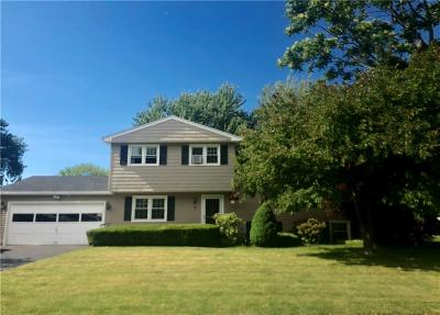 Irondequoit Single Family Home A-Active: 14 Galwood Drive