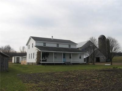 Stockton NY Single Family Home A-Active: $130,000