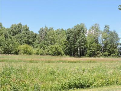 Chautauqua County Residential Lots & Land A-Active: Lawson Road