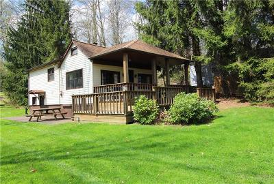 Findley Lake NY Single Family Home Sold: $199,500