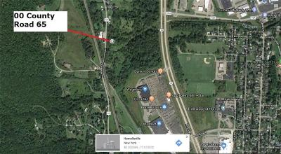 Residential Lots & Land A-Active: County Route 65