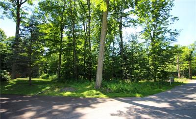Chautauqua County Residential Lots & Land A-Active: Shadyside Road