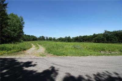 Chautauqua County Residential Lots & Land A-Active: Waterman Road