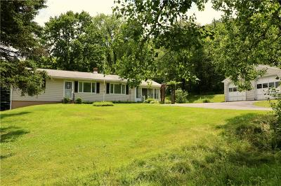 Gerry Single Family Home A-Active: 4764 Fluvanna-Townline Road