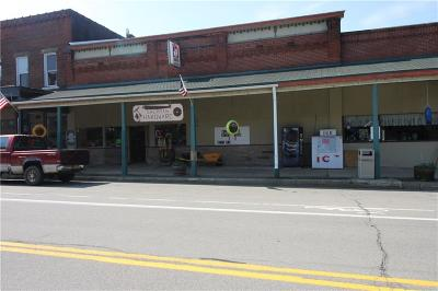 Chautauqua County Commercial A-Active: 110 West Main Street