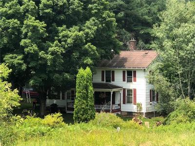 Allegany Single Family Home A-Active: 3744 West Branch Road