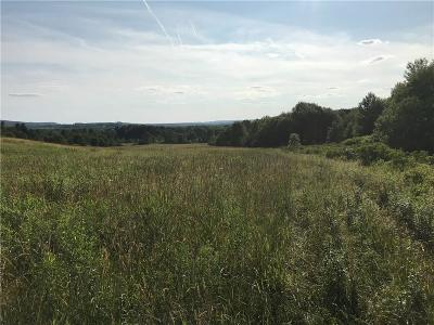 Residential Lots & Land Sold: Nys Route 241 Highway