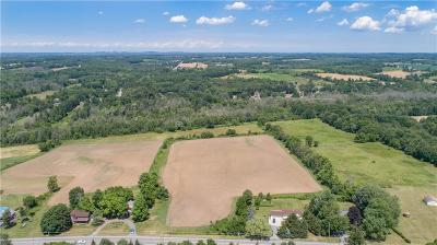 Rush Residential Lots & Land A-Active: 6436 Rush Lima Road