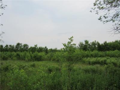 Monroe County Residential Lots & Land A-Active: Sweden Walker Road
